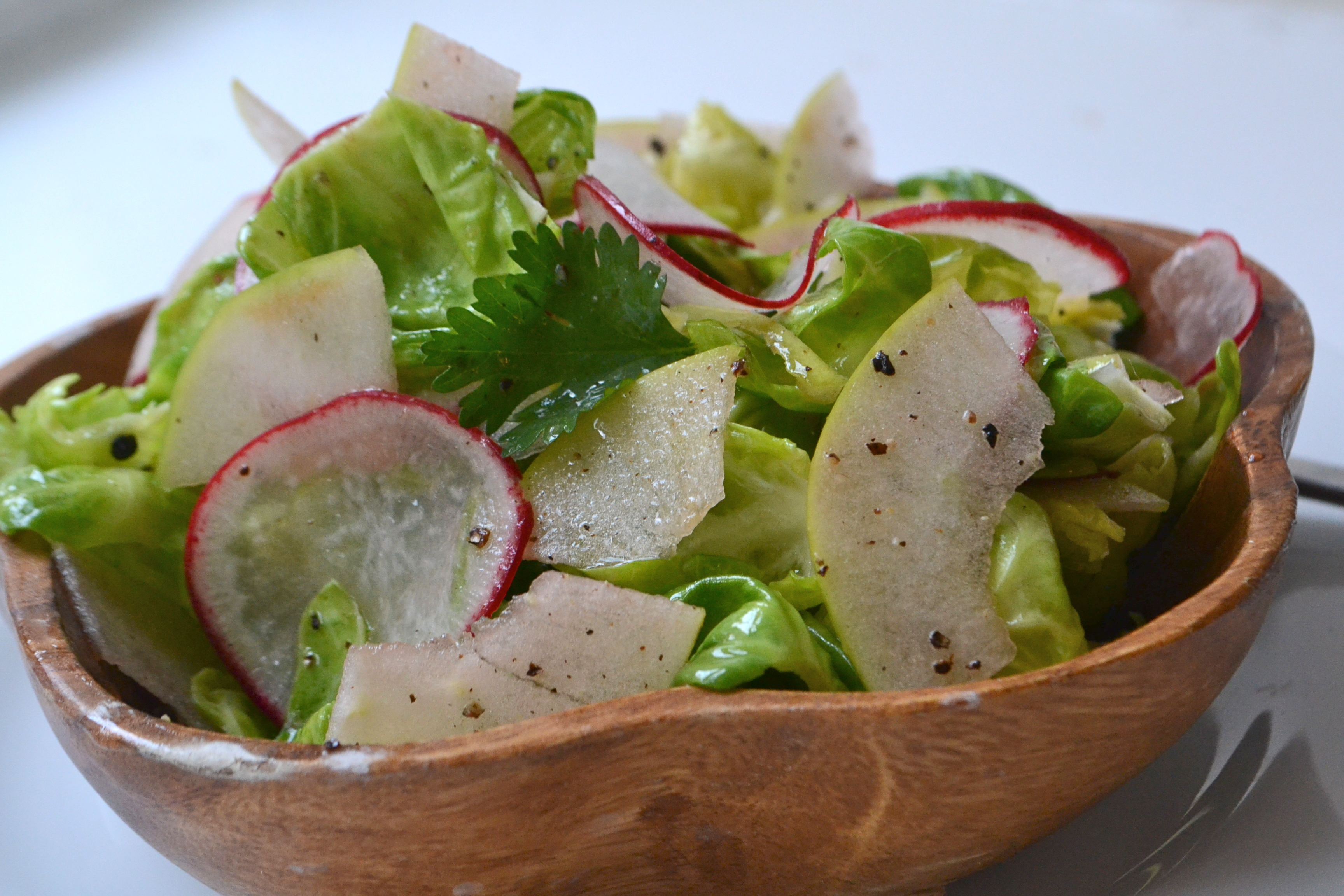 Brussels Sprouts, Radish and Apple Salad